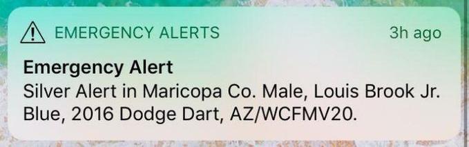 Silver-Alert